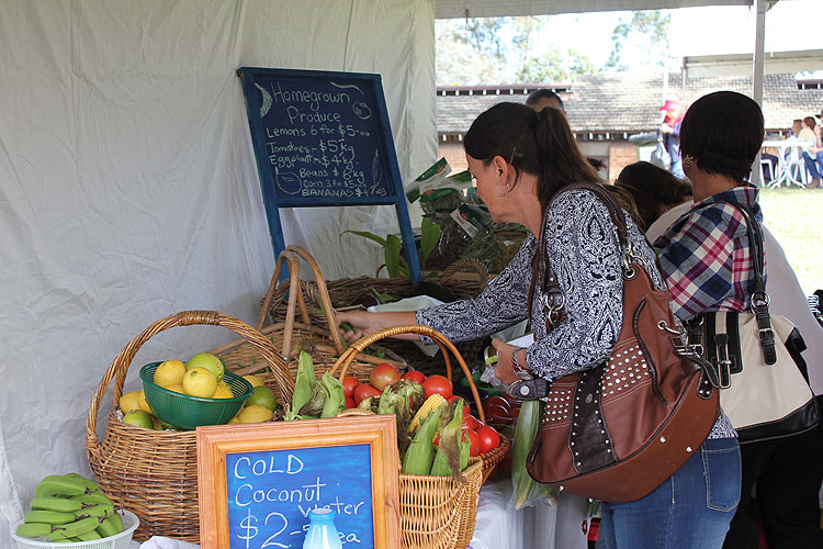Tocal-field-days-fresh-produce-exhibitor